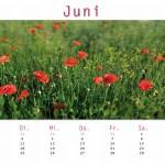 Kalender09