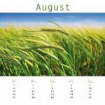 Kalender11