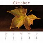 Kalender22